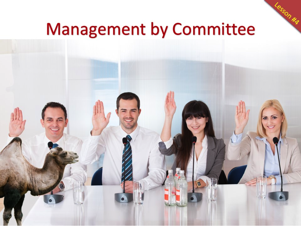 management-by-comittee
